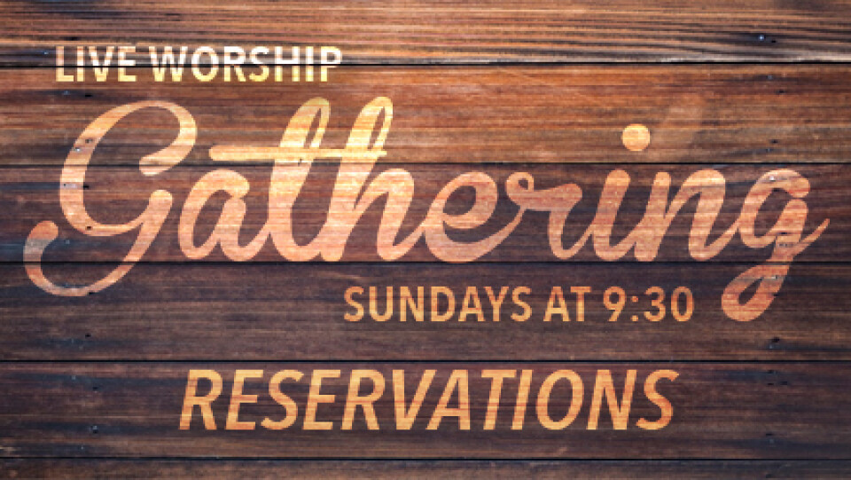 Live Worship Gathering